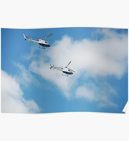 Australian Naval Helicopters Poster