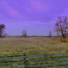 Country side  by Cricket Jones
