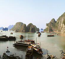 Halong Bay by tracyleephoto