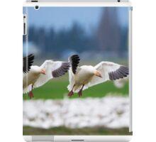 Tandem Landing iPad Case/Skin