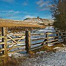 Rivington Pike by Stephen Liptrot