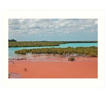 Mangroves, Roebuck Bay, Broome, Western Australia Art Print