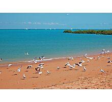 Town Beach and Roebuck Bay, Broome, Western Australia Photographic Print