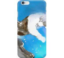 SKI DOWN(C2012) iPhone Case/Skin