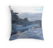 White and Blue Throw Pillow