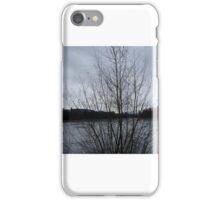 austria no 2  iPhone Case/Skin