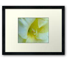 Gladioli Macro Framed Print