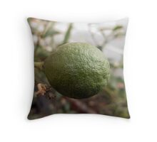 Close up of a lemon that is still growing Throw Pillow