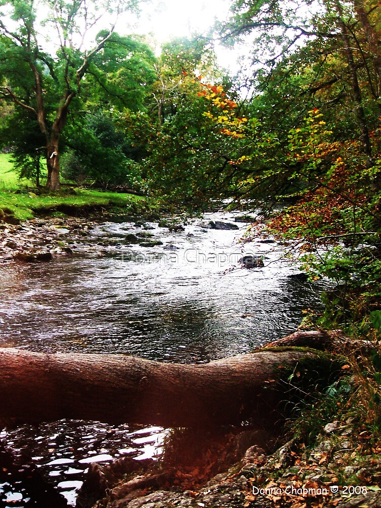 Betws-Y-Coed River by Donna Chapman