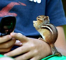 CAN YOU TEXT MY COUSIN CHIPPY IN GEORGIA? by Lori Deiter