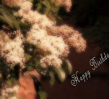 Chinese Photinia by bellecards