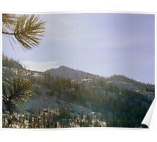 Okanagan Mountain Park Poster