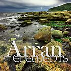 Elements of Arran by Andy Surridge