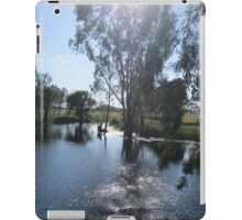 Trees and morning sun iPad Case/Skin