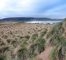 wild dunes at the maharees by morrbyte