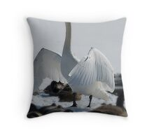 Friends, Neighbors and countrymen Lend me your ears..... Throw Pillow