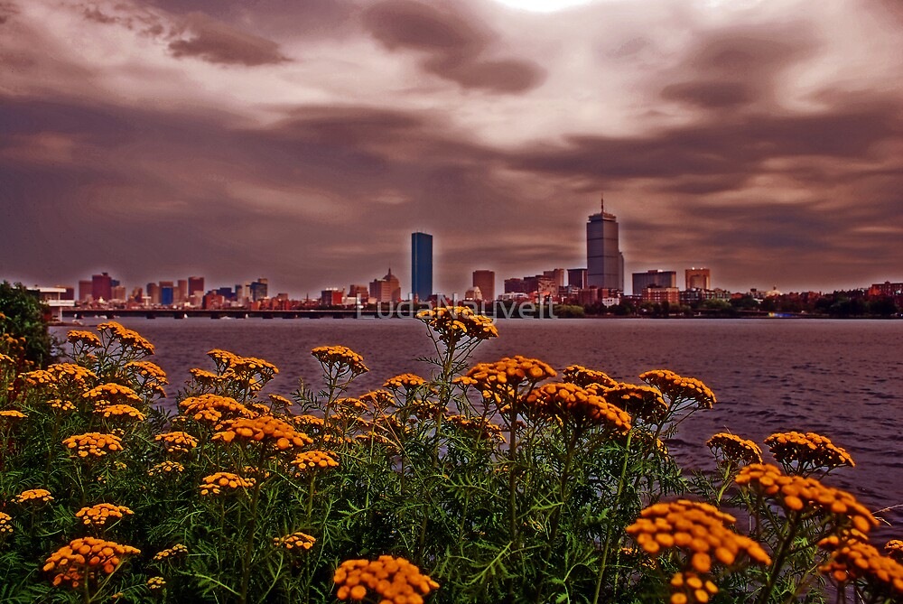 Lovely Boston by LudaNayvelt