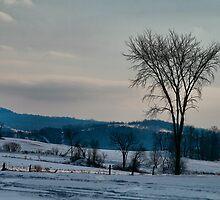 Berkshire Landscape Scene by Deborah  Benoit