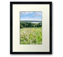 wild green Longford farmland Framed Print
