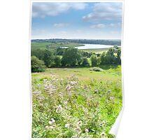 wild green Longford farmland Poster