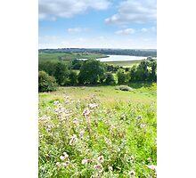 wild green Longford farmland Photographic Print