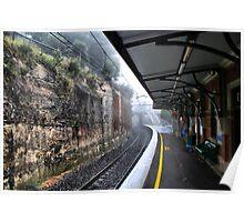 Leura railway station. Rain Poster