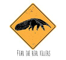 Fear the Real Killers - Anteater by Andre03
