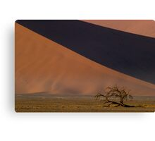Dwarfed by Dunes - Namibia Canvas Print