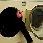 Stuck in the Dryer by ShahnaChristine .