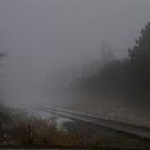 Fog over Tracks........... by Larry Llewellyn