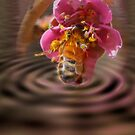 Bee Dream by thegrizz15
