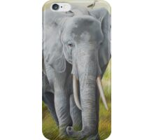 The Singing Oxpecker Hitchhikers Catch a Ride iPhone Case/Skin
