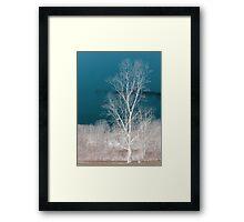 Standing Alone Framed Print