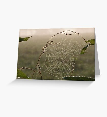 natures dreamcatcher Greeting Card