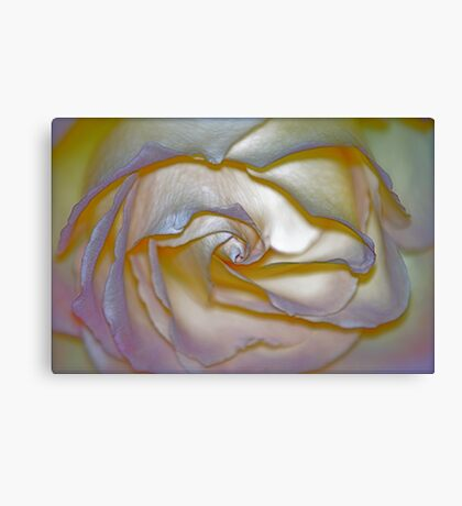 Pearlescent Canvas Print