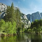 Along The Merced River by Stephen Vecchiotti