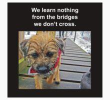 Bridges Baby Tee