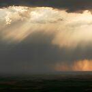 Rain by Olga Zvereva