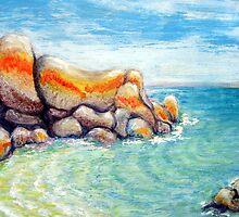 Mermaids Pool  Anderson Bay Tassie by Barbara Cliff