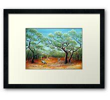 emus in the outback Framed Print