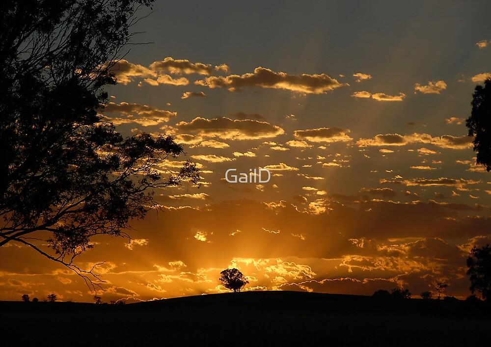 First Light by GailD