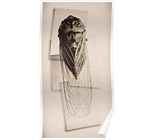 cicada project antique render Poster