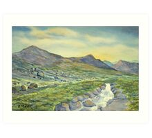Raging Ghyll, Honister Pass Art Print