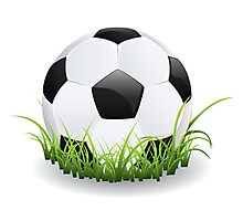 Soccer Ball with Grass Photographic Print