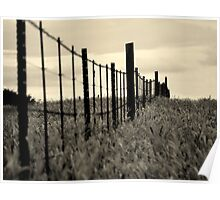fence in the tall grass Poster