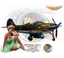 Wahl Eye / Pat - P-400 Airacobra Photographic Print