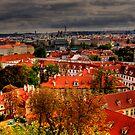Brilliant Rooftop Vista by Andreas Mueller