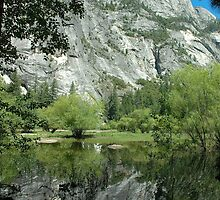 Spring Reflections, Mirror Lake by Stephen Vecchiotti