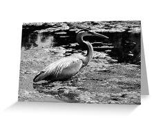Blue Heron Black&White Greeting Card