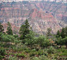 Roaring Springs Canyon by Bellavista2